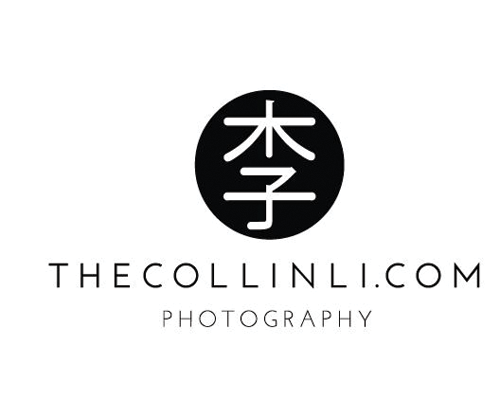 Logo for Photographer by Vanessa Street